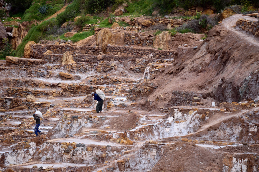 Working the salt terraces