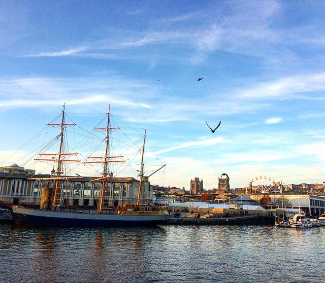 Birds and boats: a crisp winter's day on the #Bristol waterfront. #harbour #winter #city #explore