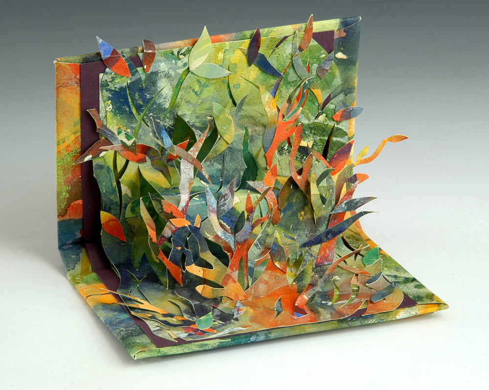 Pop Up Book  , MaryLea Harris, 2006