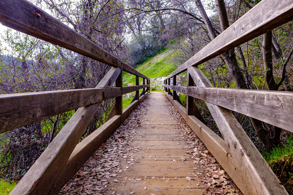 The bridge crosses some really nice streams, but they are totally dry because of the short winter.