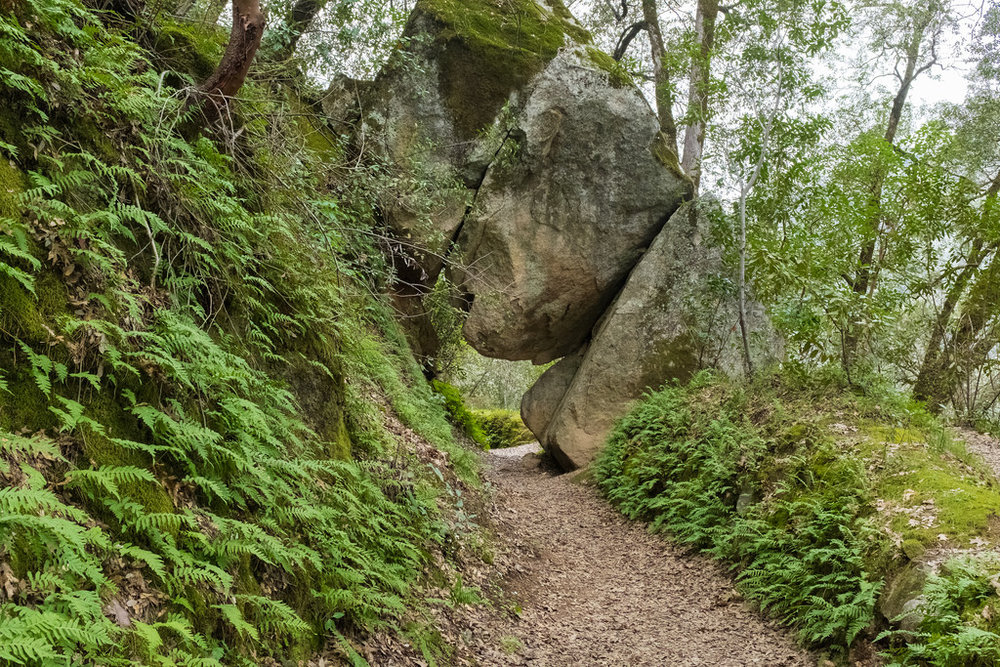 This tunnel under a giant rock can be found along the east trail.