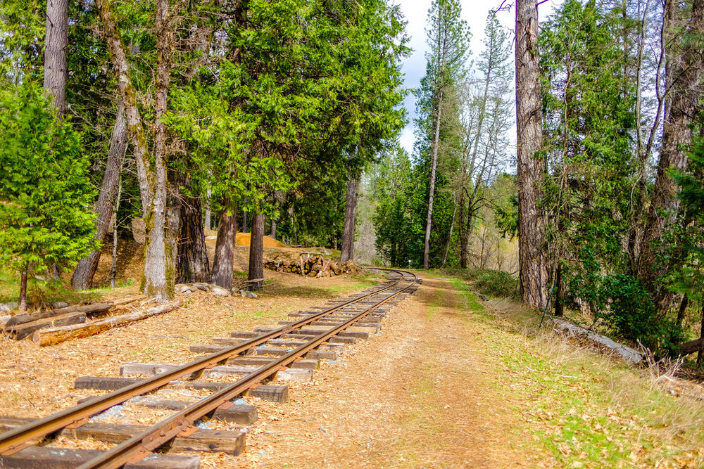 Next to the campground is the Nevada County Narrow Gauge Railroad Museum, which is a great place to visit with the family.
