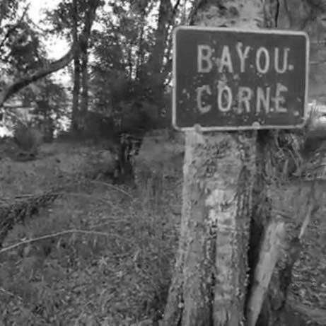 Bayou Corn.jpg