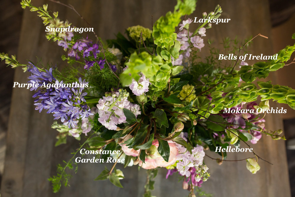 The stems found in Enchantment along with Mini Hydrangea and some greenery.
