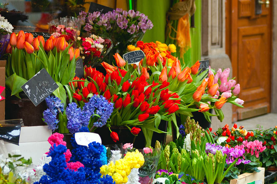 A French flowers market by color.