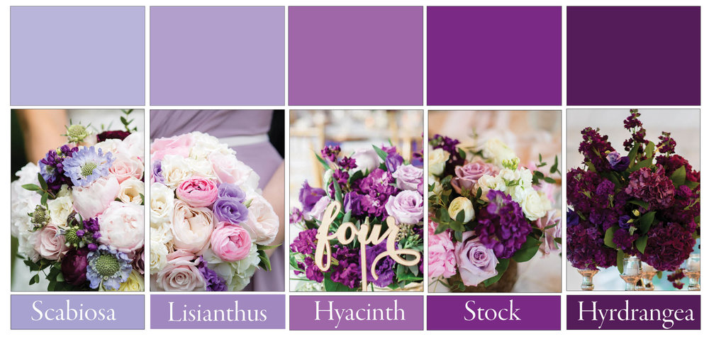 We are making a lot of purple wedding florals in 2017. Lavender, purple and plum to be exact. Here are some varieties you can choose. Lepold, Ewell, Birds of a Feather and Tony O'Dell Photography.