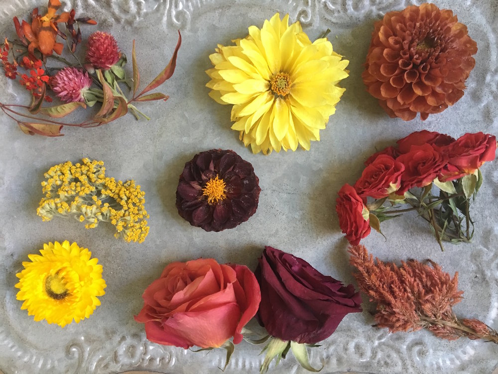 The fully preserved blooms. Top Row: Euphorbia, Crocosmia, Gomphrena and Nandina, Yellow Dahlia, Orange Dahlia. Middle Row: Yarrow, Burgundy Dahlia, Orange Spray Roses. Third Row: Strawflower, Orange and Red Rose, Celosia.