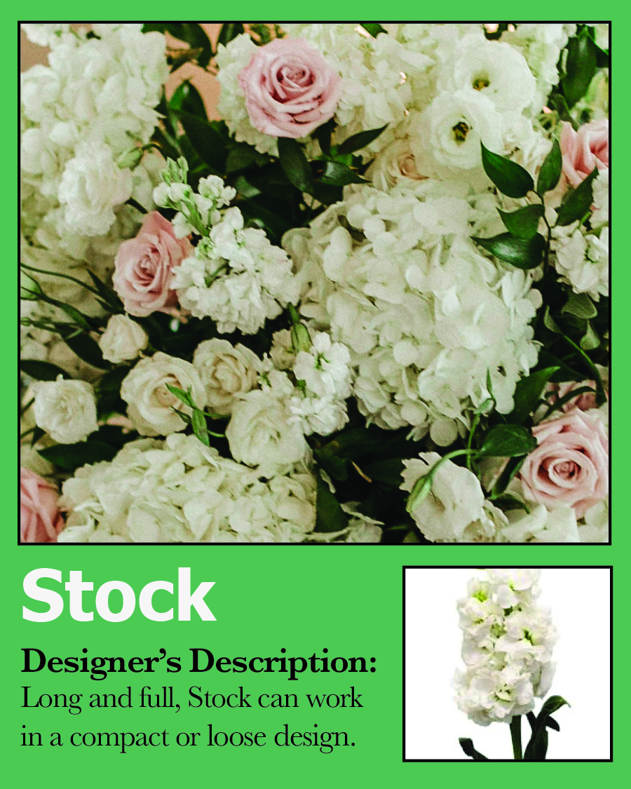 Card-Stock-white-flower-wedding.jpg