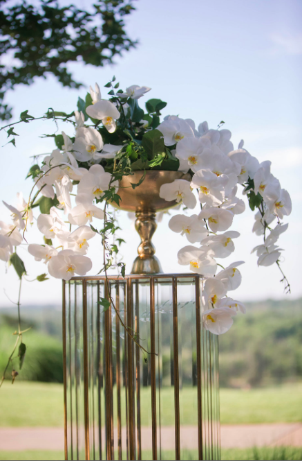 Phaleonopis Orchids in a gold compote on a glass and gold stand flank the officiant. Kristen Gardner Photography.