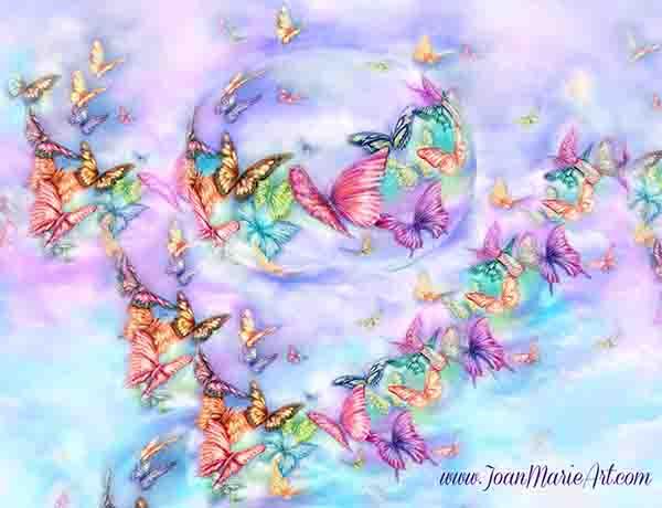 butterflies 1.jpg