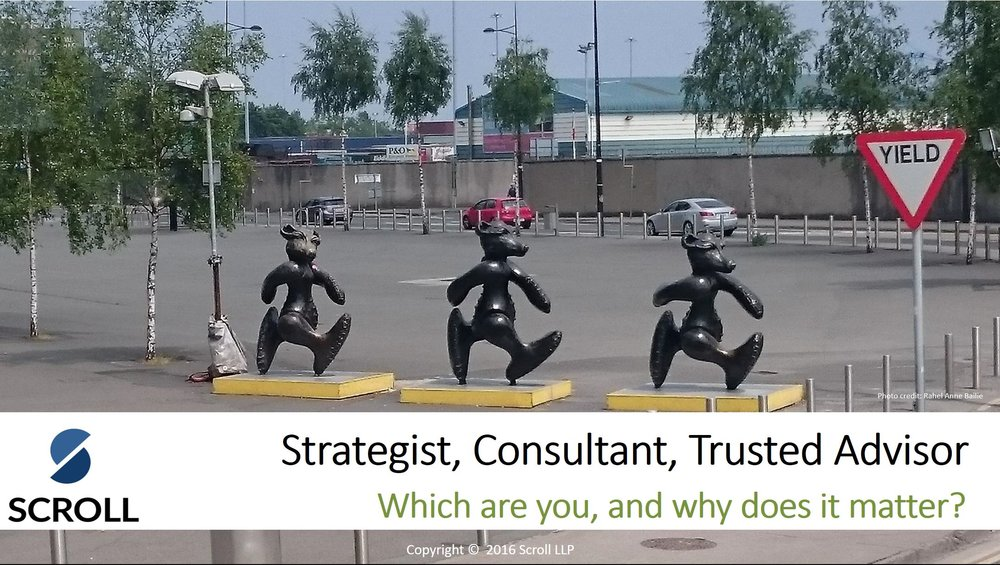 Strategist Consultant Trusted Advisor.JPG