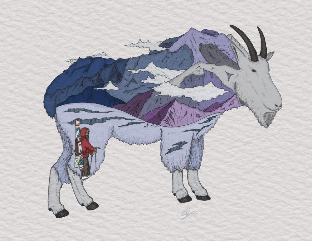 davids goat.jpg