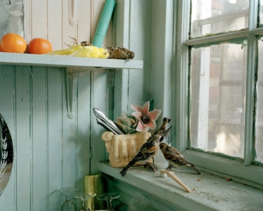 Susan-Worsham-Photography-Room.jpg