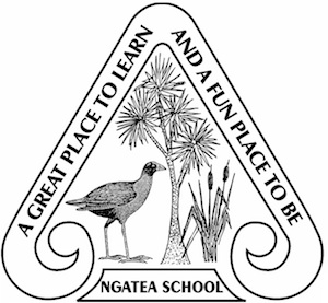 Ngatea Primary School