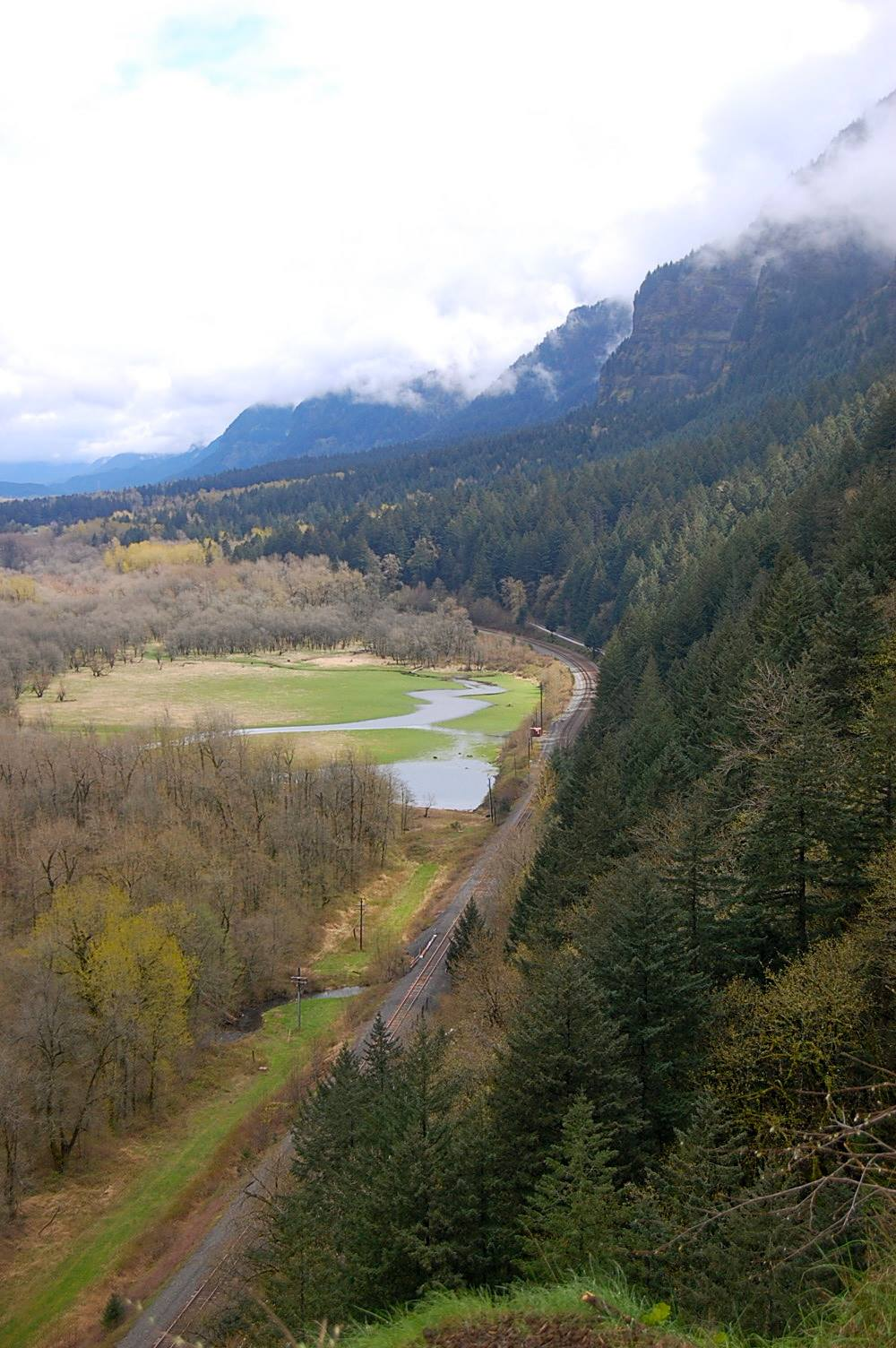 VIEW FROM THE TRAILS- COLUMBIA RIVER GORGE