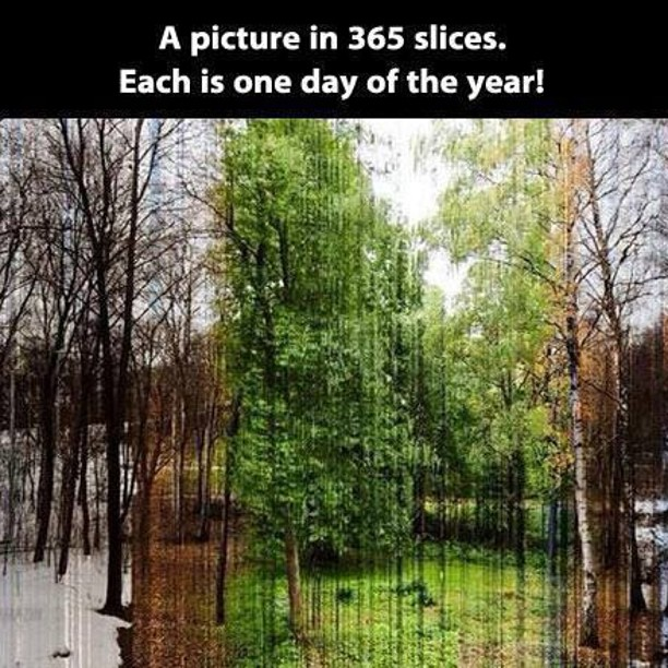 365 days of Mother Nature ;)