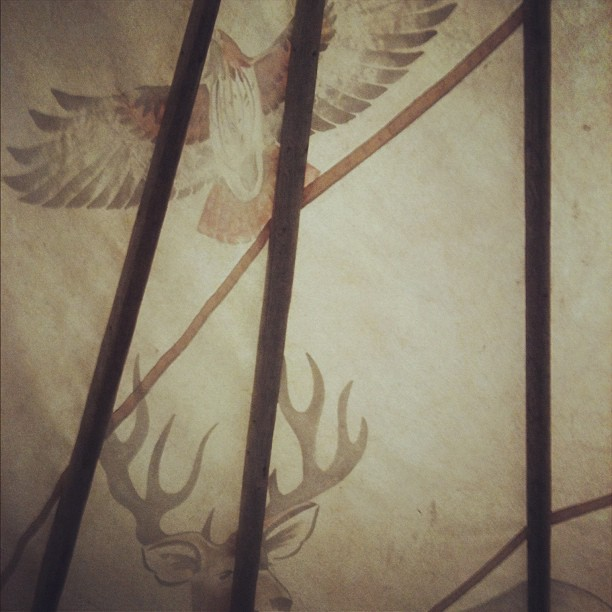 The inside of a teepee on the #naturewalk at #chudleighsapplefarm. I love me some #animaltotems  (Taken with  Instagram )