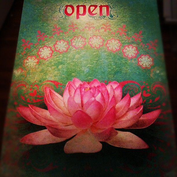 The open lotus - got this card from my girl Aleeza! Thanks!! I just love the lotus so much and I look at this an feel so open to the new seeds of enlightenment coming my way :)