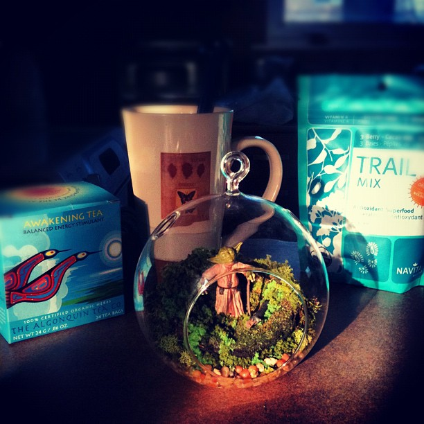 Goodmorning! Getting my #workflow under way. From right to left we have my box of Awakening tea from The Algonquin Tea Co., my mug of hot tea brewing, my brand new terrarium with none other that Yoda himself (thanks babe!) and my bag of Navitas Antioxidant Superfood Trail Mix - goji berries, mulberries, goldenberries, cacao nibs and cashews. YUM!