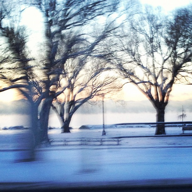 A few mornings ago driving into work, Lake Ontario was so cold there was frozen steam rising over the water!