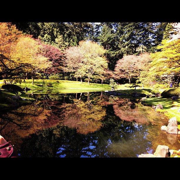 Saw this beautifully amazing, zen-like reflection at the Dr. Inazo Nitobe Japanese Garden. It was a true #oasis.