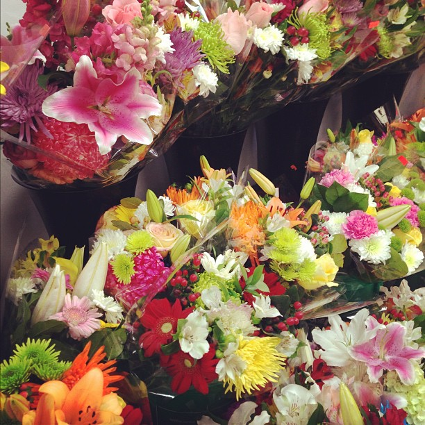Buying flowers yesterday for my Dads (surprise) 65th party! Thank goodness he doesn't know how to use the interwebs!