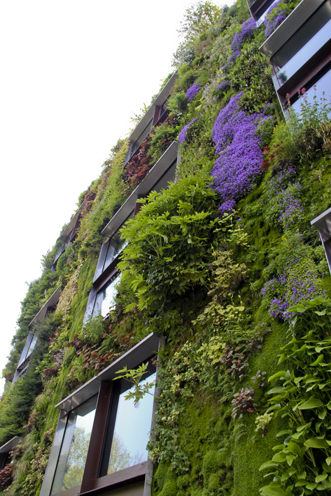 urbangreens :      Evigglade submitted:      Vertical green flowering wall Musee du Quai Branly in Paris   Photo taken by evigglade.blogspot.com