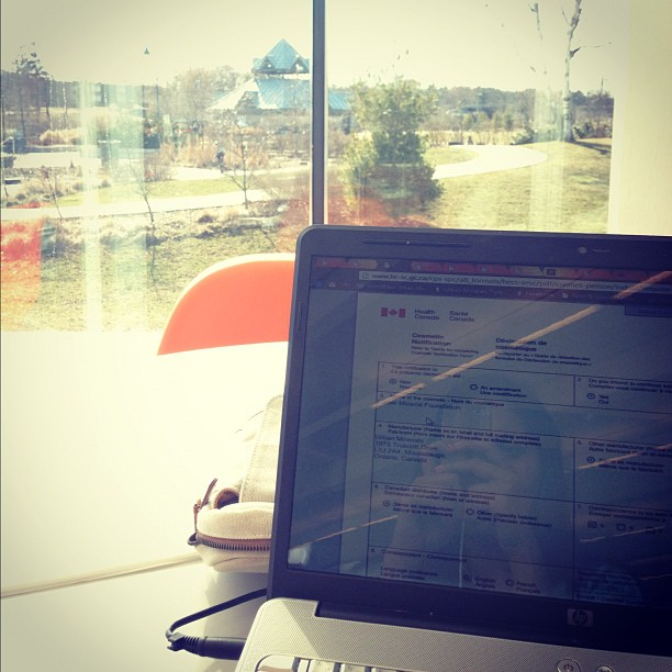 My view from the library today #dayoffdayon #workingitout #portcredit #librarytings   My oh my, after the week I had, it has been so refreshing to just get out of my own way and get down to some work at the library.  Ugh, so nice.     I love the library.  Always have.  There's just something about the way the books smell and the quiet atmosphere, the people reading books or discovering something new in the stacks that inspires me to work really hard.  And work hard I did.   Today was a day to get my business plan in tip top shape and to research everything that I need to know.  I began compiling all of my ingredients for listing and started a Cosmetic Notification form that needs to be submitted to Health Canada so that I can actually run Urban Minerals as a business.  Just making sure that all my ducks will line up makes me feel good.  I'm just happy to be doing it now and accomplishing it today.   Plus the added bonus of sitting at a window and getting to look out at the birds whizzing by, getting some amazing sunshine and just enjoying the beautiful people looking happy has me feeling extra good.  I hope you get the chance to head outside today friends!