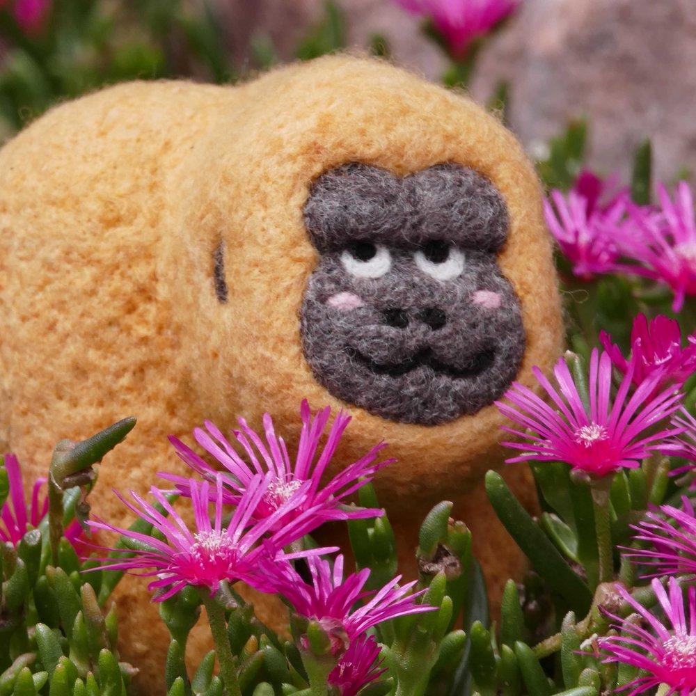 Golden Gorilla in Flowers_SQUARE.jpg