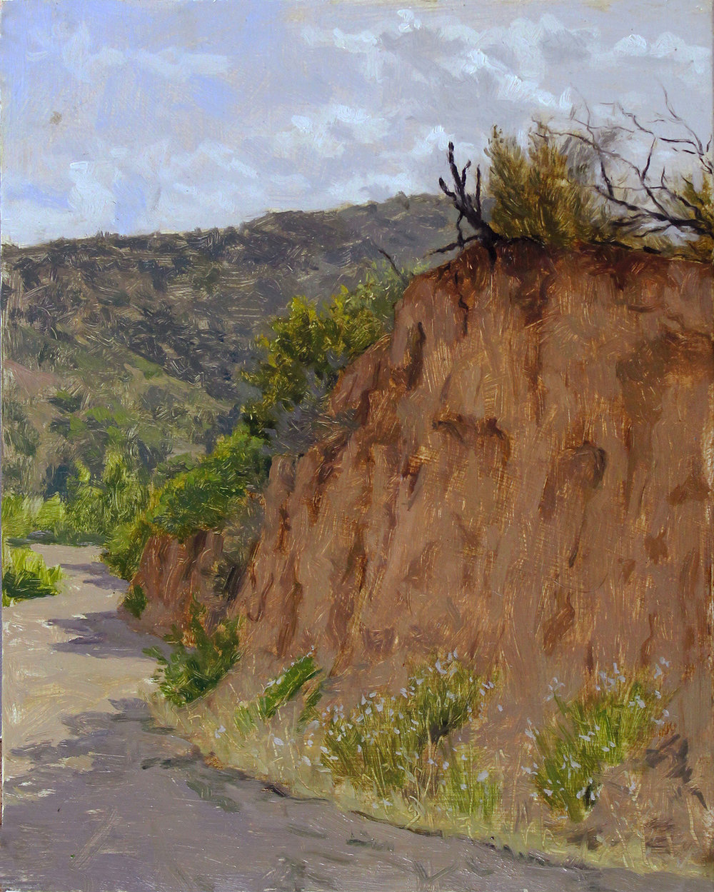 Coyote-Hill-10x8in-oil.jpg