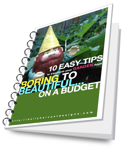 Free Download   Learn some basic design tricks to transform your yard from boring to beautiful!  Read more...