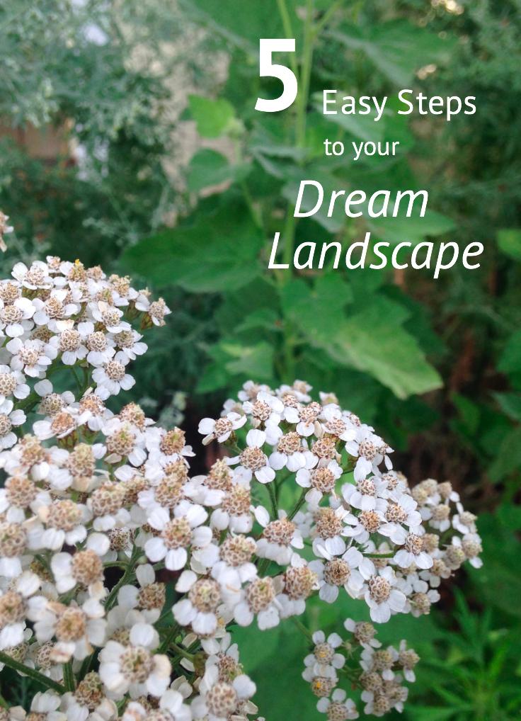 landscape_design_steps.png