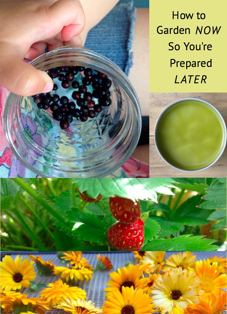Emergency_Preparedness_Gardening.png