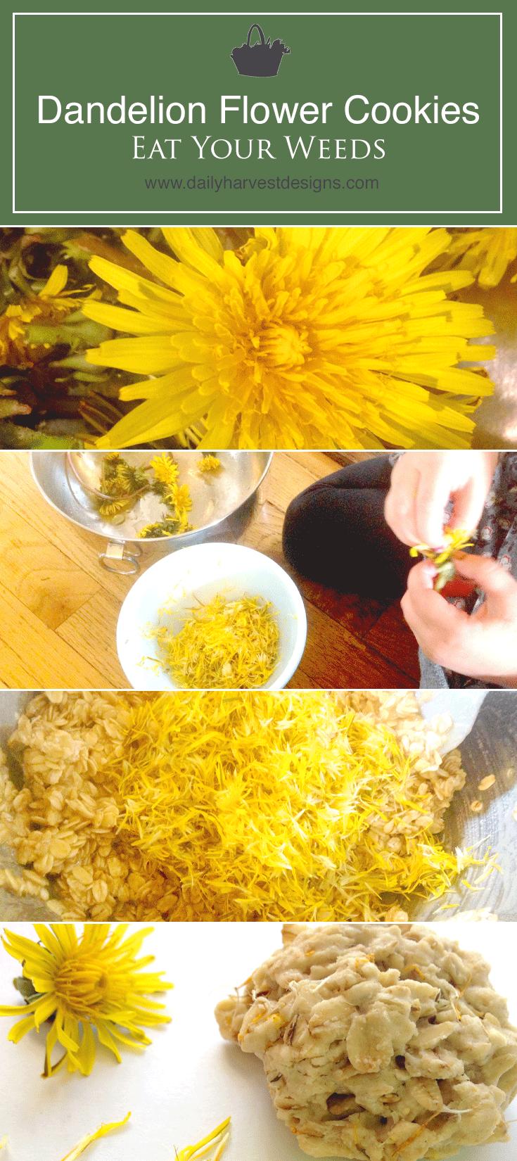 dandelion flower cookies.png