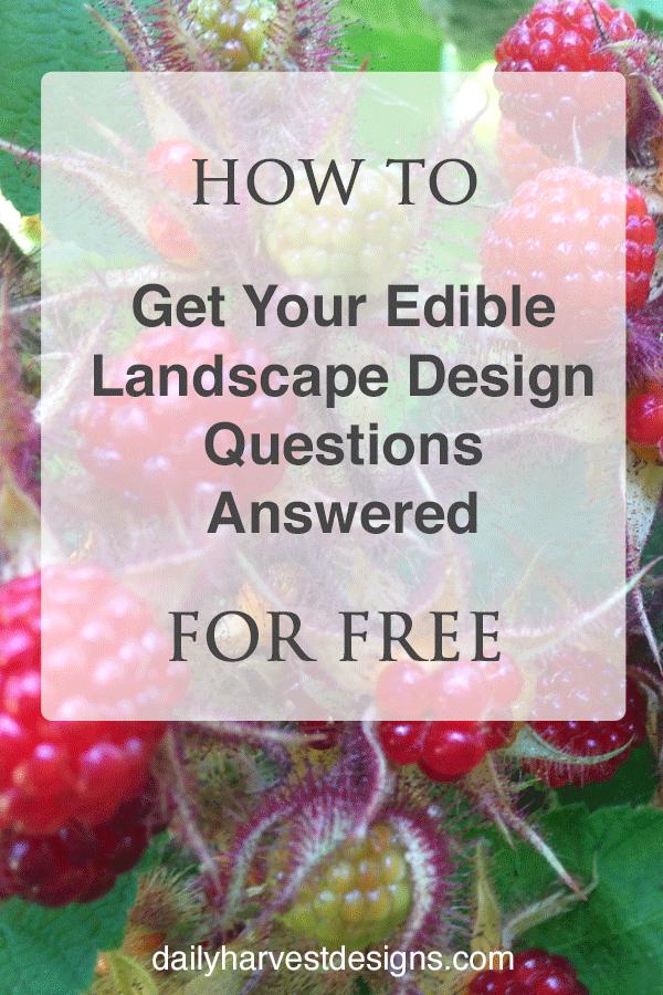 landscape design questions.png