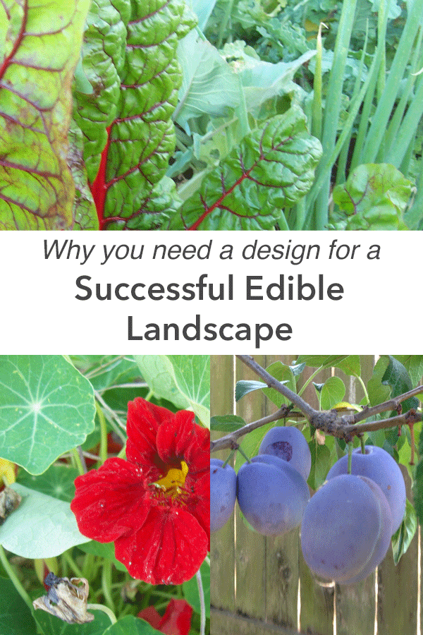 successful edible landscape design projects.png