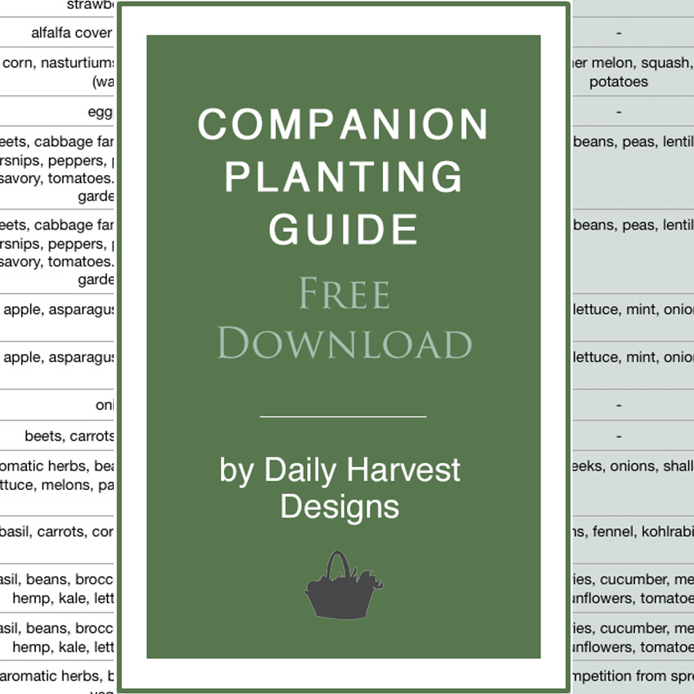 Companion-Planting-Guide-Image-2-1000x1000px.png