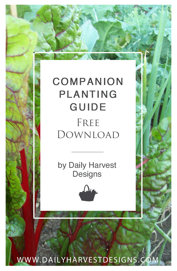 Companion-Planting-Guide3.png