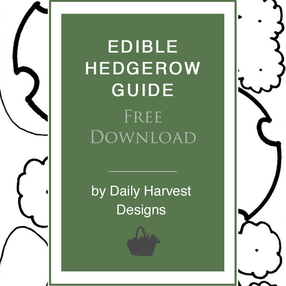 Edible-Hedgerow-Design-Icon_1000px.png