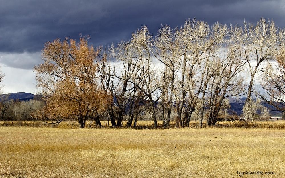 Boulder, Colorado 2014