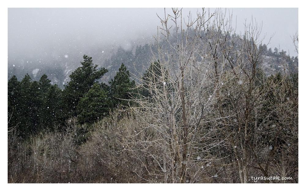 Boulder snow.jpg
