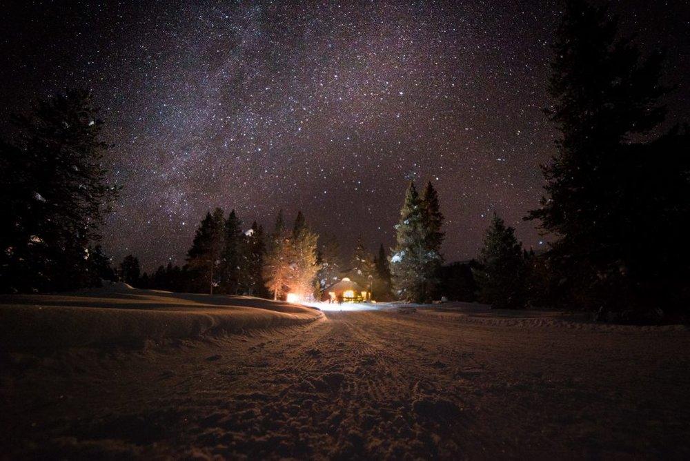 Photo by Thomas Kolicko.