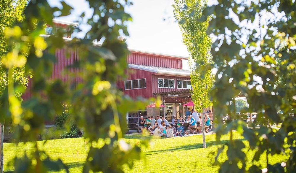 VENTURE TO YAKIMA IN WASHINGTON STATE TO CHECK OUT BALE BREAKER, A FARM BREWERY OWNED BY THREE SIBLINGS. (BALE BREAKER BREWING)