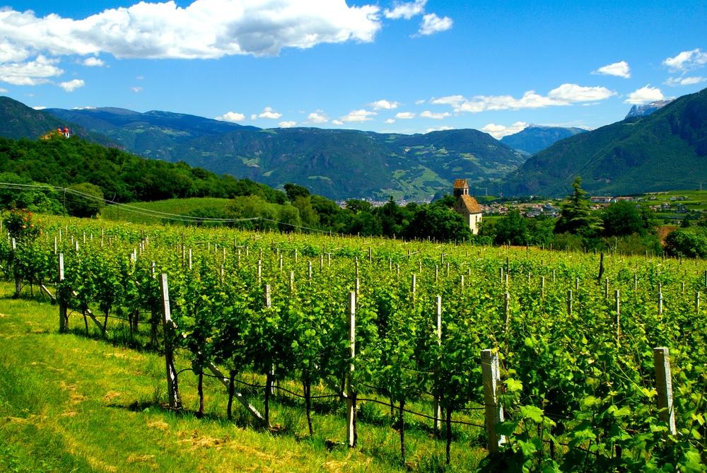 South Tyrol, June 2014