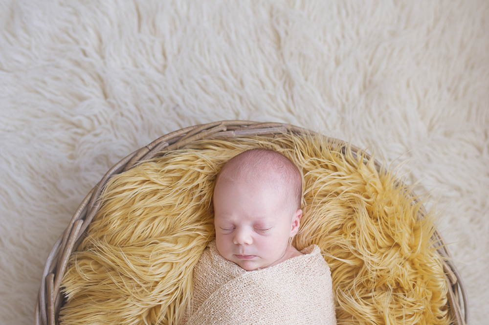 biekebruggeman-newborn-5.jpg