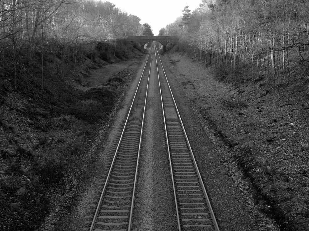 Vanishing Point, Railway lines in Sutton Park, 2008