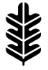 bodymindgreen_LOGO_KLEIN.png