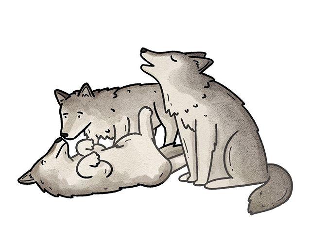 Drew some wolves.