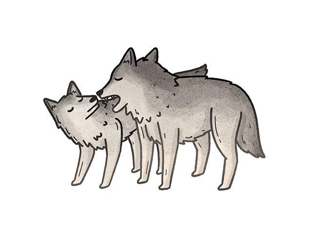 More wolves.