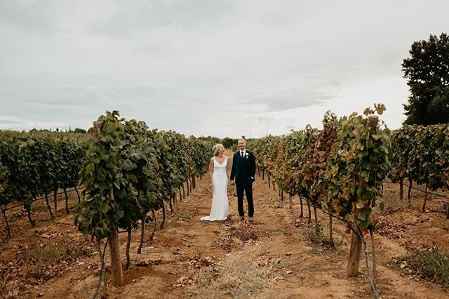 Weddings and vineyards 🧡 #weddingphotographer #dirtybootsandmessyhair #algarvephotographer #algarveweddingphotographer #algarveweddings #lookslikefilm #vscofilm #loveauthentic @glamour_algarve_weddings